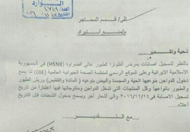 عراق واردات مرغ و تخم مرغ ایرانی را ممنوع کرد+ سند